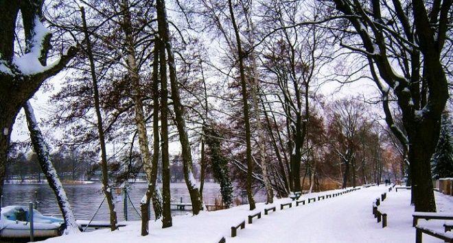 Foto en invierno mejor hora